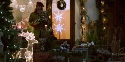 Bauli-Natale f