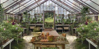Philadelphia-Greenhouse a